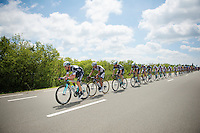 Iljo Keisse (BEL/OmegaPharma-Quickstep) pacing the peloton<br /> <br /> Ster ZLM Tour 2014<br /> stage 4: Hotel Verviers - La Gileppe (187km)