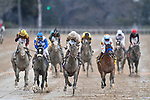 HOT SPRINGS, AR - FEBRUARY 19: Southwest Stakes at Oaklawn Park on February 19, 2018 in Hot Springs, Arkansas. (Photo by Ted McClenning/Eclipse Sportswire/Getty Images)