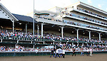 June 13, 2015:  Triple Crown winner American Pharoah parades in front of the crowd at Churchill Downs on Stephen foster night.  Candice Chavez/ESW/CSM