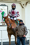 JAN 24, 2021 : The Grass is Blue with Manuel Franco, wins the Busanda Stakes, for 3 year old fillies, earning 10 Kentucky Oaks points at Aqueduct Racetrack, Ozone Park, NY. Sue Kawczynski-Eclipse Sportswire-CSM