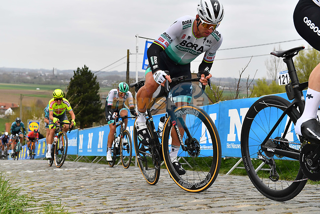 Peter Sagan (SVK) Bora-Hansgrohe climbs the Paterberg during the 2021 Tour of Flanders running 254.3km from Antwerp to Oudenaarde, Belgium. 4th April 221.  <br /> Picture: Serge Waldbillig | Cyclefile<br /> <br /> All photos usage must carry mandatory copyright credit (© Cyclefile | Serge Waldbillig)
