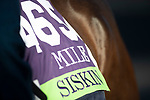 November 3, 2020: Siskin, trained by trainer Ger Lyons, exercises in preparation for the Breeders' Cup Mile at Keeneland Racetrack in Lexington, Kentucky on November 3, 2020. Carolyn Simancik/Eclipse Sportswire/Breeders Cup