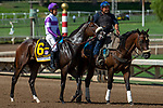 ARCADIA, CA. SEPTEMBER 30:  #6 Fool's Paradise, ridden by Mario Gutierrez, in the post parade of the Zenyatta Stakes (Grade l) on September 30, 2018, at Santa Anita Park in Arcadia, CA.(Photo by Casey Phillips/Eclipse Sportswire/CSM)