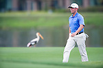 Chez Reavie walks past local wildlife on the fifteenth fairway during a practice round during the CIMB Asia Pacific Classic 2011.  Photo © Raf Sanchez / PSI for Carbon Worldwide