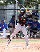 Ghordy Santos - San Francisco Giants 2019 extended spring training (Bill Mitchell)