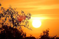 Western Cape Sunset, Gulf Of Carpentaria
