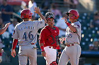 Clearwater Threshers Dalton Guthrie (46) high fives Matt Kroon (45) after a home run as catcher Ivan Herrera (34) looks on during a Florida State League game against the Palm Beach Cardinals on August 10, 2019 at Roger Dean Chevrolet Stadium in Jupiter, Florida.  Clearwater defeated Palm Beach 11-4.  (Mike Janes/Four Seam Images)