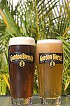 Two Beers, Gordon Biersch Restaurant, Miami, Florida