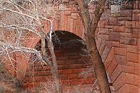 Trees and Pine Creek Bridge, Zion National Park, Washington County, UT