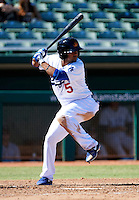 Mesa Solar Sox second baseman Rafael Ynoa #5, of the Los Angeles Dodgers organization, during an Arizona Fall League game against the Peoria Javelinas at HoHoKam Park on October 15, 2012 in Mesa, Arizona.  Peoria defeated Mesa 9-2.  (Mike Janes/Four Seam Images)