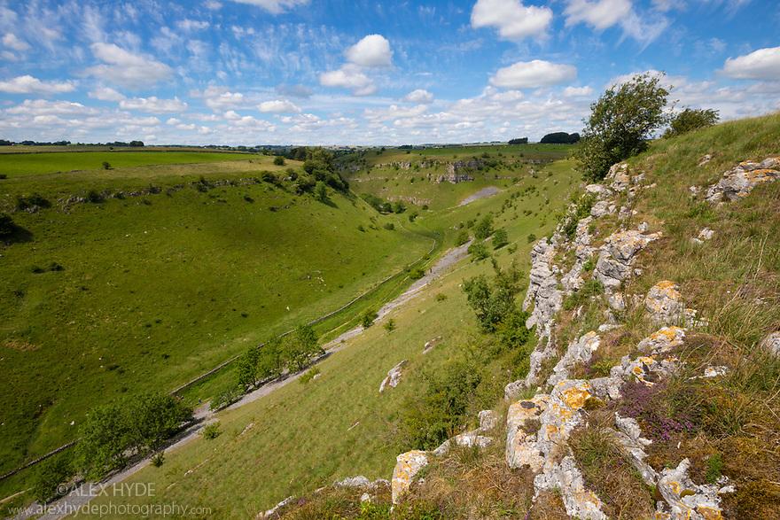 Lathkill Dale National Nature Reserve, Peak District National Park, Derbyshire, UK. July.