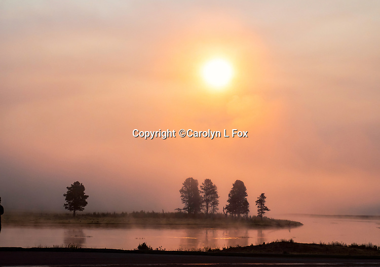 The sunrise was beautiful in Hayden Valley in Yellowstone.