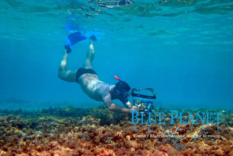 Filming underwater, Halkidiki, Greece, Aegean,Mediterranean,Europe
