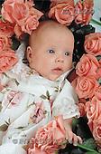 Interlitho, Alberto, BABIES, photos, pink roses(KL15500,#B#) bébé