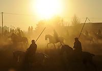Riders take part in the 'El toro de la Vega' (The bull of the plain) bullfight, on September 16, 2008 in Tordesillas, near Valladolid, © Pedro ARMESTRE.