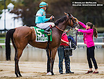 ELMONT, NY - OCTOBER 08: Lady Eli #5, ridden by Irad Ortiz Jr, receiving a bath, after winning the 39th Running of The Flower Bowl, on Jockey Club Gold Cup Day at Belmont Park on October 8, 2016 in Elmont, New York. (Photo by Douglas DeFelice/Eclipse Sportswire/Getty Images)