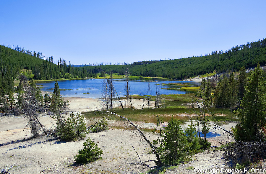 Nymph Lake, fed by hot waters of Frying Pan Spring, lies along the road just north of Norris Geyser Basin in Yellowstone National Park.  Yellowstone National Park, the first National Park in the world, still enthrals over three million visitors a year with it's geothermal features,wildlife,  rugged mountains, deep canyons and stunning ecosystem.