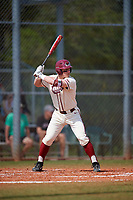 Saint Joseph's Hawks designated hitter Andrew Cossetti (33) bats during a game against the Ball State Cardinals on March 9, 2019 at North Charlotte Regional Park in Port Charlotte, Florida.  Ball State defeated Saint Joseph's 7-5.  (Mike Janes/Four Seam Images)