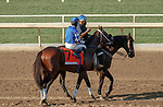 ARCADIA, CA  OCT 3:  #7 Mo Forza, ridden by Flavien Prat, in the post parade of the City of Hope Mile Stakes (Grade ll) on October 3, 2020 at Santa Anita Park in Arcadia, CA.(Photo by Casey Phillips/Eclipse Sportswire/CSM.)