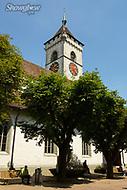 Image Ref: SWISS053<br /> Location: Schaffhausen, Switzerland<br /> Date of Shot: 20th June 2017
