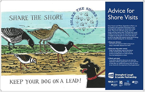 The panels give advice on dog walking to allow the birds to feed undisturbed