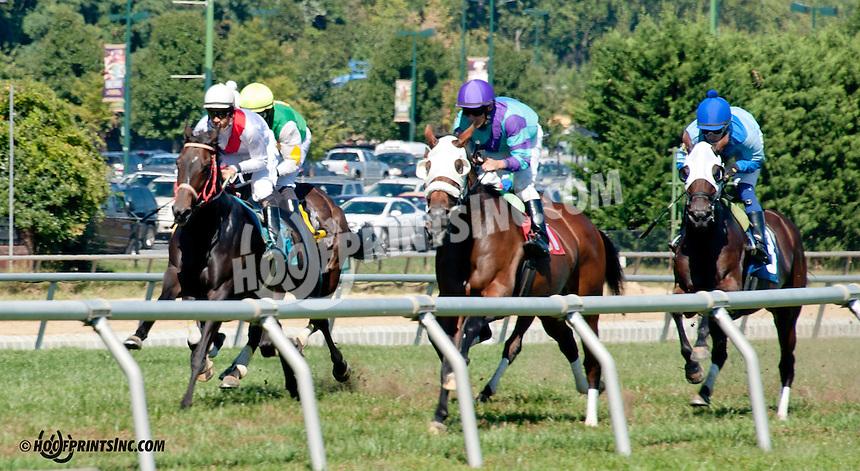 Jane's Heir winning at Delaware Park on 9/18/13