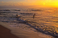 Three people in the ocean at sunset, Polihale state park beach. 17 miles of unspoiled golden beach and dunes Northwest coast of Kauai