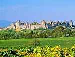 France, Languedoc-Roussillon, Département Aude, Carcassonne: view over vineyards to the City (la Cite), since 1997 UNESCO World Cultural Heritage | Frankreich, Languedoc-Roussillon, Département Aude, Carcassonne: Cité de Carcassonne, seit 1997 Weltkulturerbe der UNESCO