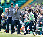 31.03.2019 Celtic v Rangers: Neil Lennon celebrates Edouard's goal