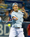Tommy Haas (GER) falls to Juan Martin del Potro (ARG) 7-6(4), 6-3 in the Semifinals of the Citi Open in Washington, DC on August 3, 2013.