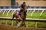 DEL MAR, CA - OCTOBER 31:  Goodthingstaketime, owned by Sheep Pond Partners, Bradley Thoroughbreds & Tim and Anna Cambron and trained by James Stack, exercises in preparation for Breeders' Cup Juvenile Fillies Turfat Del Mar Thoroughbred Club on October 31, 2017 in Del Mar, California. (Photo by Alex Evers/Eclipse Sportswire/Breeders Cup)