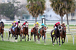 February 21, 2015: Fairgrounds Handicap at the New Orleans Fairgrounds Risen Star Stakes Day. Steve Dalmado/ESW/CSM