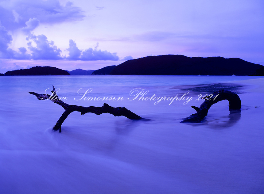 Driftwood at Cinnamon Bay.Virgin Islands National Park.St. John, U.S. Virgin Islands, Living Art