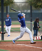 Marcus Chiu - Los Angeles Dodgers 2019 spring training (Bill Mitchell)