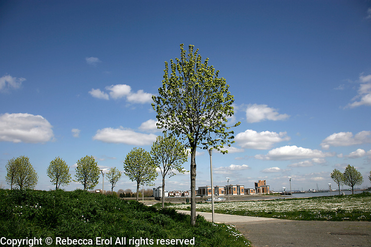The Royal Arsenal Gardens at Woolwich, southeast London, UK, include a wildflower meadow