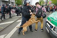 Gegen den Protest mehrerer tausend Menschen setzte die Polizei am 1. Mai in Berlin einen Aufmarsch von ca. 300 Neonazis aus ganz Deutschland durch. Es gab mehrere Versuche die Marschroute mit Blokaden zu sperren, so auch einer Betonpyramide, an die sich 4 Menschen angekettet hatten.<br />Im Bild: Eine Polizistin aus Schleswig-Holstein kann ihren Hund nicht halten, so dass der Hund einen Jounalisten aus Holland aus Niedersachsen anfaellt.<br />1.5.2013, Berlin<br />Copyright: Christian-Ditsch.de<br />[Inhaltsveraendernde Manipulation des Fotos nur nach ausdruecklicher Genehmigung des Fotografen. Vereinbarungen ueber Abtretung von Persoenlichkeitsrechten/Model Release der abgebildeten Person/Personen liegen nicht vor. NO MODEL RELEASE! Don't publish without copyright Christian-Ditsch.de, Veroeffentlichung nur mit Fotografennennung, sowie gegen Honorar, MwSt. und Beleg. Konto:, I N G - D i B a, IBAN DE58500105175400192269, BIC INGDDEFFXXX, Kontakt: post@christian-ditsch.de<br />Urhebervermerk wird gemaess Paragraph 13 UHG verlangt.]