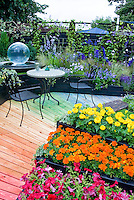 Mixture of hot to cool colors in garden path and plantings of flowers, annuals and perennials in rainbow of hues for color themes in small space
