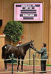 September 08, 2014:Hip #90 Benchmark - Mo Chuisle colt consigned by Taylor Made Sales Agency, sold for $560,000 to Lael Stable at the Keeneland September Yearling Sale.  Candice Chavez/ESW/CSM