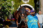 DEL MAR, CA  AUGUST 1:  #4 Paige Anne, ridden by Flavien Prat, enters the paddock before the Clement L. Hirsch Stakes (Grade 1) Breeders Cup Win and You're In Distaff Division on August 1, 2021 at Del Mar Thoroughbred Club in Del Mar, CA.