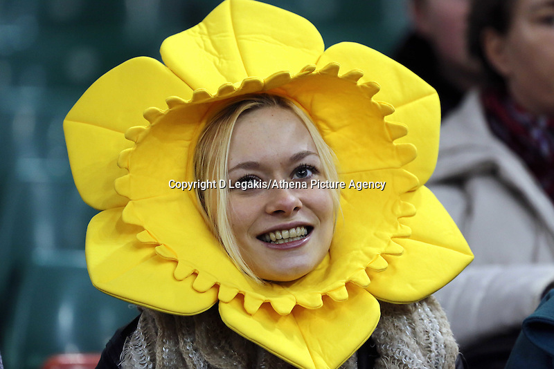 Pictured: A welsh supporter wearing a daffodil head. Saturday 08 November 2014<br /> Re: Dove Men Series rugby, Wales v Australia at the Millennium Stadium, Cardiff, south Wales, UK.