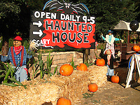 Scarecrows, hay bales, pumpkins and a haunted house sign offering fair warning -  SCARY!