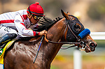 JULY 25, 2021: Risk and Reward wins a maiden race with Abel Cedillo aboard at Del Mar Fairgrounds in Del Mar, California on July 25, 2021. Evers/Eclipse Sportswire/CSM
