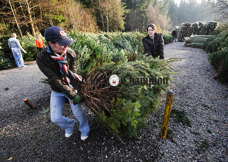 Sisters Jennifer and Anne O Shea after choosing a Christmas tree at Cratloe Woods. Photograph by John kdelly.