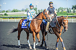Athenian Guard(3) with Jockey Omar Moreno aboard at the 155th Queen's Plate at Woodbine Race Course in Toronto, Canada on July 06, 2014.