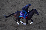 November 3, 2020: Gretzky The Great, trained by trainer Mark E. Casse, exercises in preparation for the Breeders' Cup Juvenile Turf at Keeneland Racetrack in Lexington, Kentucky on November 3, 2020. John Voorhees/Eclipse Sportswire/Breeders Cup/CSM