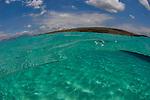 Shallow water under overs, Menjangan Island National Park, Pemuteran, Bali, Indonesia, Pacific Ocean