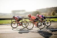 Jens Keukeleire (BEL/Lotto-Soudal), Greg VAN AVERMAET (BEL/CCC) & Alberto Bettiol (ITA/EF Education First)<br /> <br /> 62nd E3 BinckBank Classic (Harelbeke) 2019 <br /> One day race (1.UWT) from Harelbeke to Harelbeke (204km)<br /> <br /> ©kramon