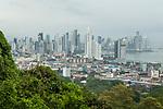 Tropical rainforest and city, Ancon Hill, Panama City, Panama