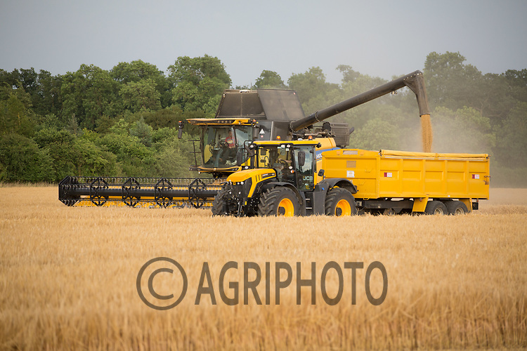 Harvesting Winter barley in the late evening sun<br /> Picture Tim Scrivener 07850 303986<br /> ….covering agriculture in the UK….