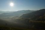 Italien, Piemont, Langhe, bei Alba: Weinberge, Landschaft, Morgennebel, Sonne, Gegenlicht | Italy, Piedmont, Langhe, near Alba: hazy landscape, vineyards, back light